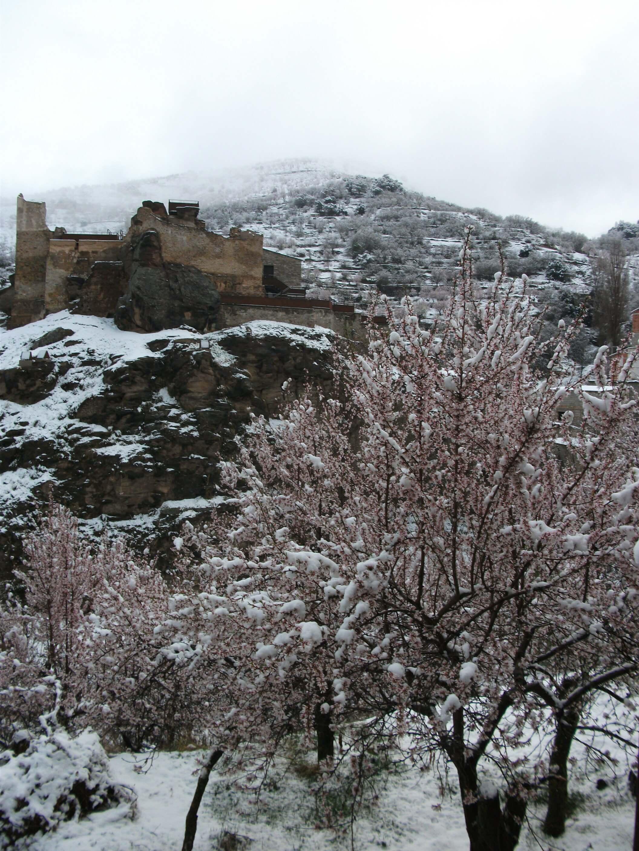 nieve 5 bacares hotel las fuentes